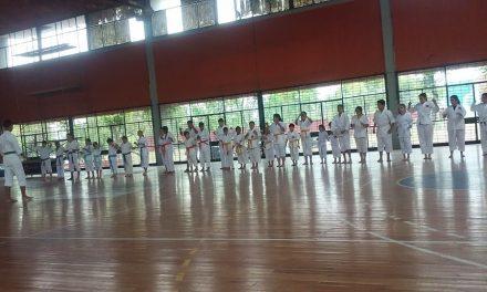 Cursos de Karate en el Gimnasio Municipal con la profesora,sensei Soledad Arjona
