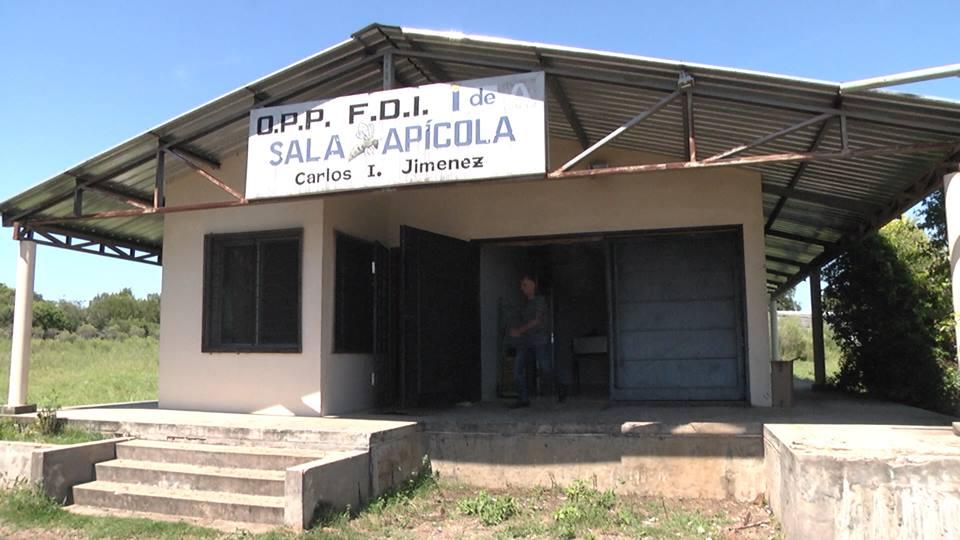 MAS DE 30 APICULTORES TRABAJAN EN LA SALA DE EXTRACCIÓN DE MIEL DE NUESTRA CIUDAD