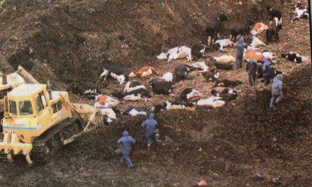 SE CUMPLIERON 18 AÑOS DEL RIFLE SANITARIO DEL AÑO 2000