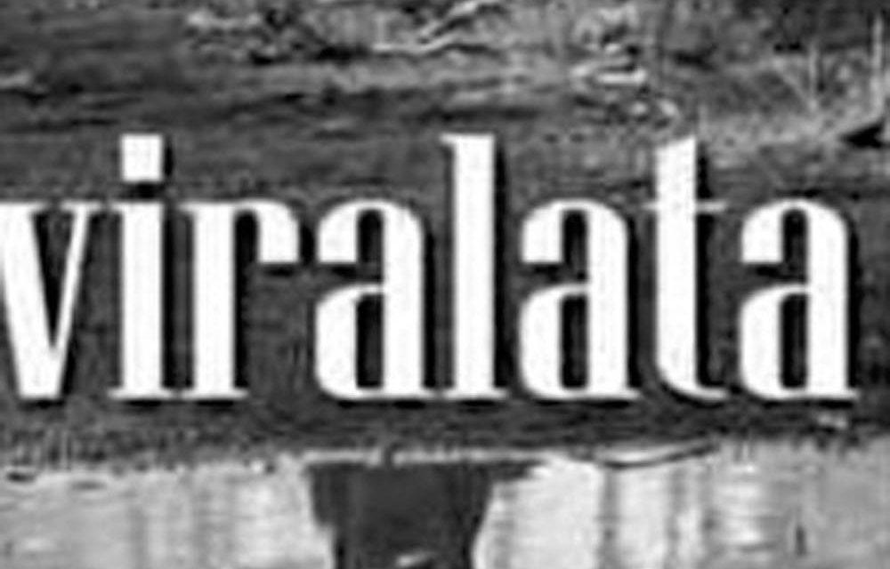 EL LIBRO «VIRALATA» DEL ESCRITOR ARTIGUENSE FABIAN SEVERO SE PODRÁ LEER CON TECNOLOGÍA NFC