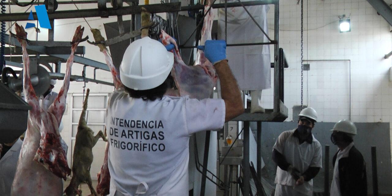 «EL FRIGORÍFICO ES GENERADOR DE MANO DE OBRA Y BENEFICIA A LOS CARNICEROS LOCALES