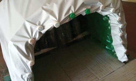 PEQUEÑOS ROTARIOS CONSTRUYEN CASITAS CON MATERIALES DESCARTABLES PARA PERROS CALLEJEROS.